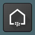 Blackberry Launcher Logo