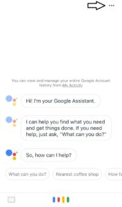 Settings mode in Google Assitant.