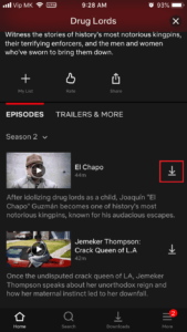 Download episods on Netflix.